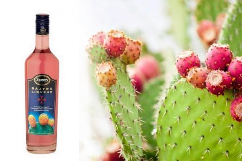 liquore cactus