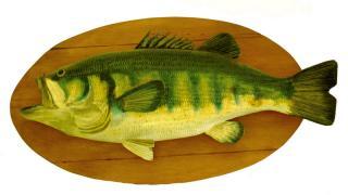 BlackRain79 Fish