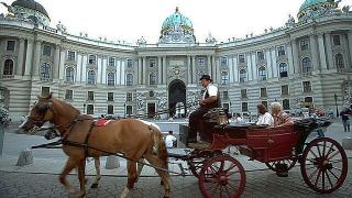 Palacio Hofburg