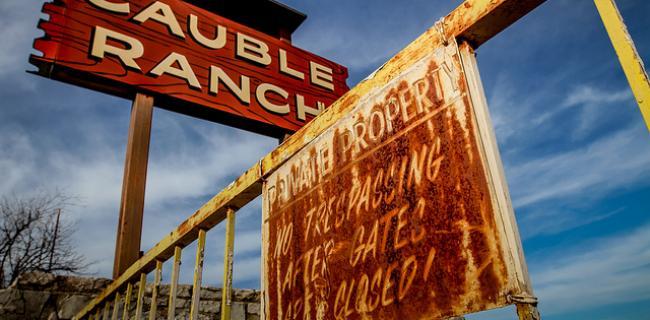 Gansters, gamblers y estafadores: Rex Cauble como principal ejemplo